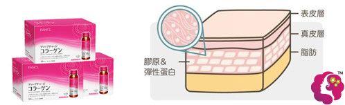 喝过多的胶原蛋白可能导致脂肪不吸收